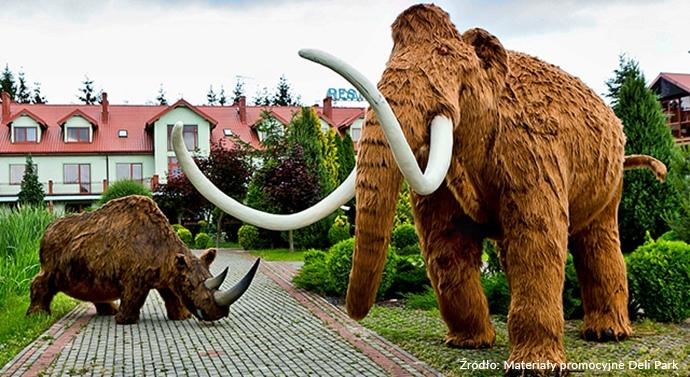 Najlepsze parki rozrywki w Polsce - Deli Park