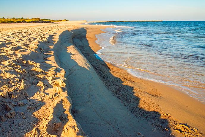 Ranking plaż 2019 - Ustka