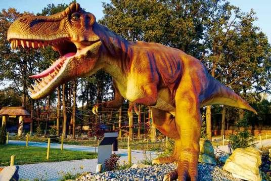 Każde dziecko marzy, by znaleźć się w parku dinozaurów. Zobaczyć, jakie są olbrzymie, jak potrafią głośno ryczeć i zabawnie machać ogonem. W Dream Parku można spełnić to marzenie. Największy dinozaur – brachiozaur – mierzy ponad 8 m.