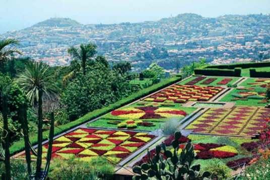Ogród botaniczny w stolicy wyspy