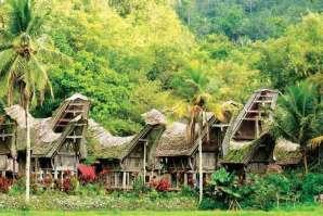 Tradycyjne domy plemienia Toraja zamieszkującego wyspę Celebes
