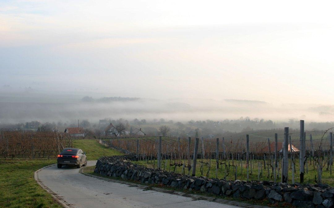 Węgry – Somló, wina na wulkanie