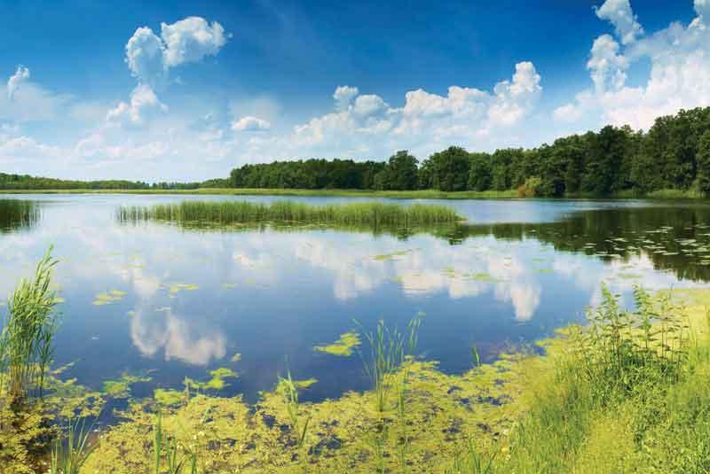 Park-Krajobrazowy-okolice-Lublińca-fot.www.slaskie.travel-Tomasz-Gębuś