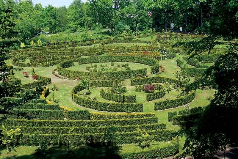 Zaczarowany-Ogród