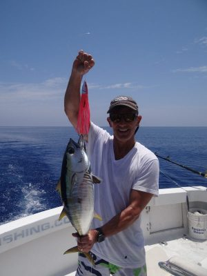 Yellowfin tuna on Pink Phoenix Fishead Lure Turks and Caicos