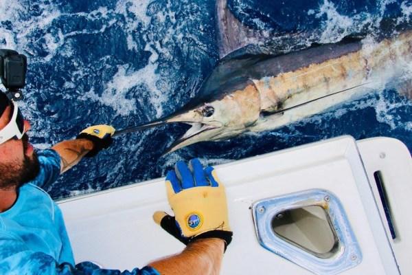 Nice Marlin magbay lures