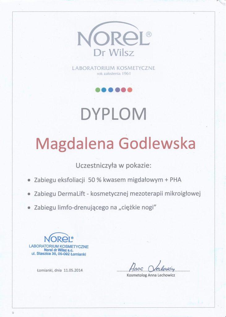 Norel dyplom