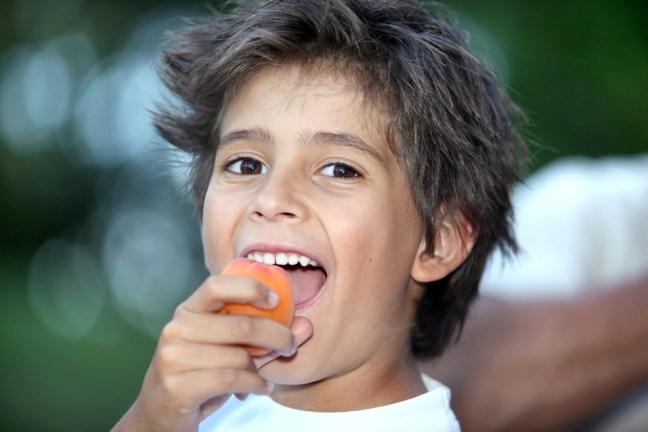 Eichhörnchenstrategie 5: Kauen ist entscheidend für unsere Essgeschwindigkeit, Zufriedenheit & Sättigung.