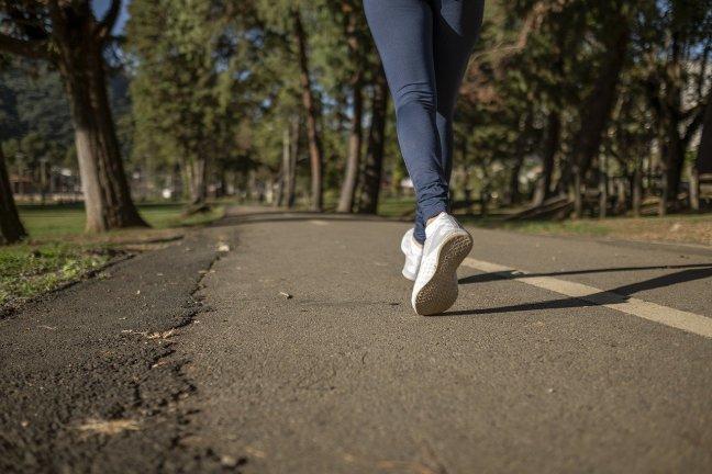 Läufer-Laufen-Einsteiger-Running-Joggen