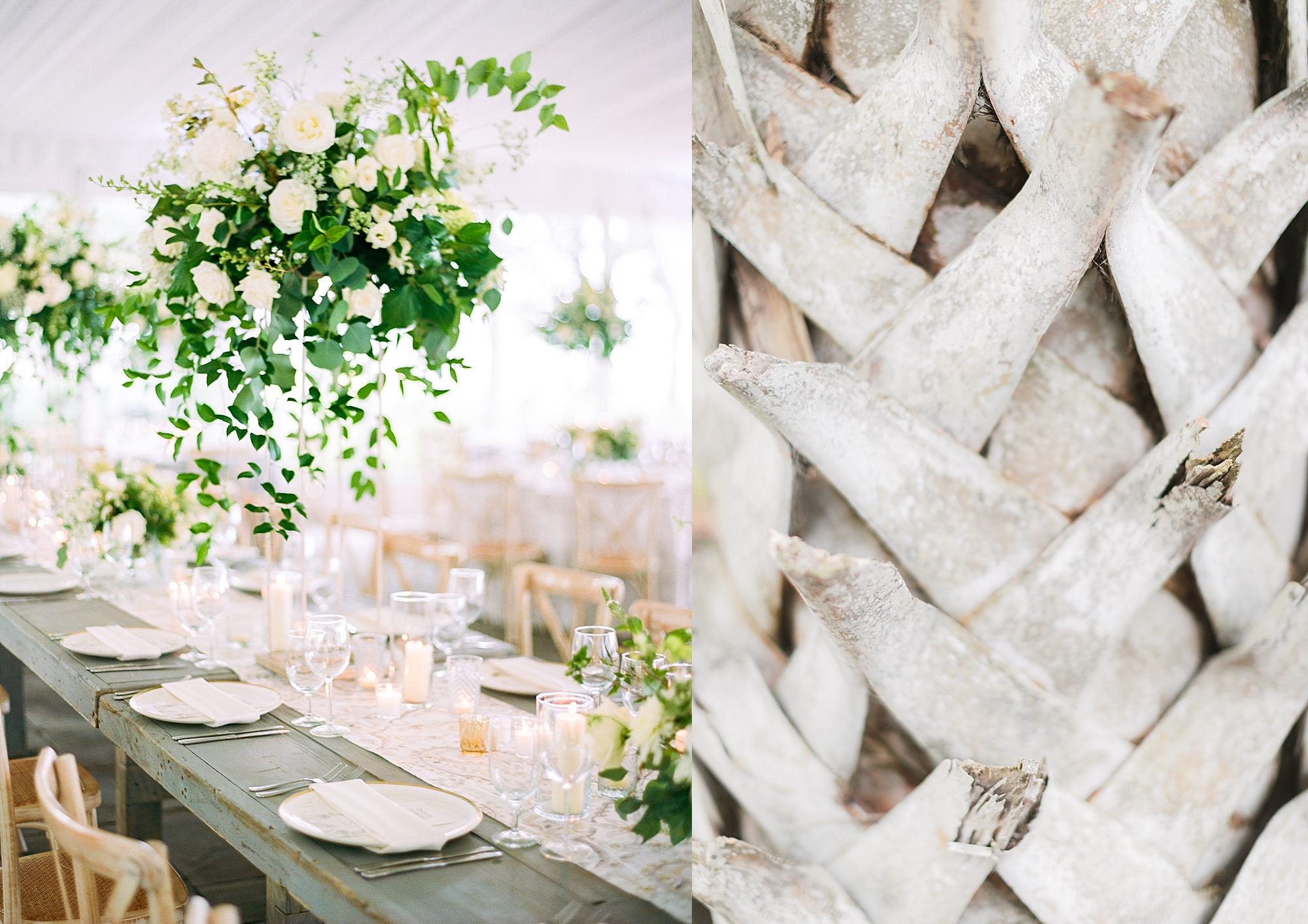 Lowndes Grove Plantation Charleston Film Wedding Photographer Magdalena Studios75