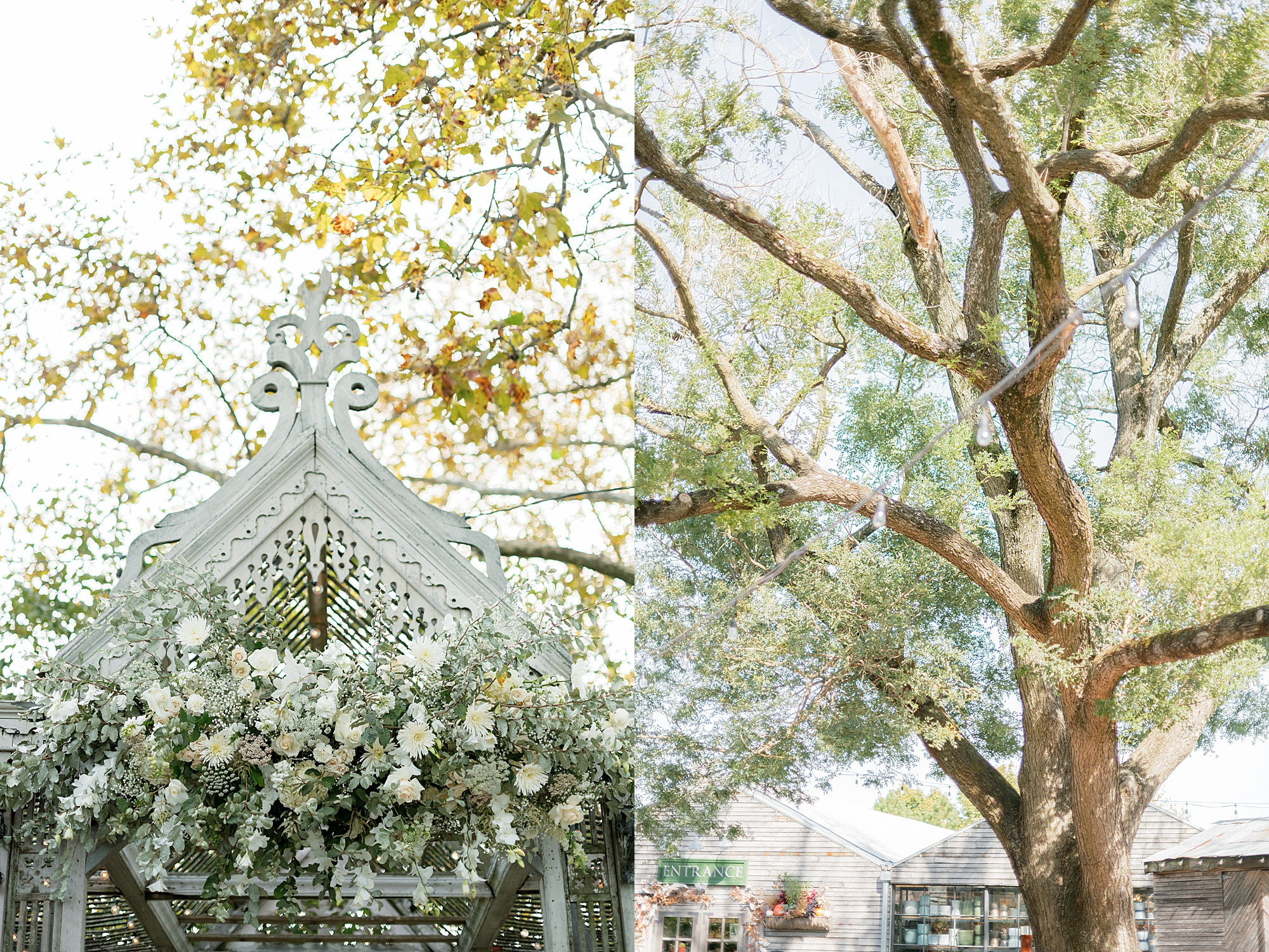 Terrain at Styers Wedding Photography by Magdalena Studios 0010