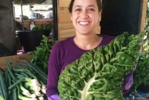 Polo Hortícola de Magdalena produce verduras y vegetales libre de tóxicos