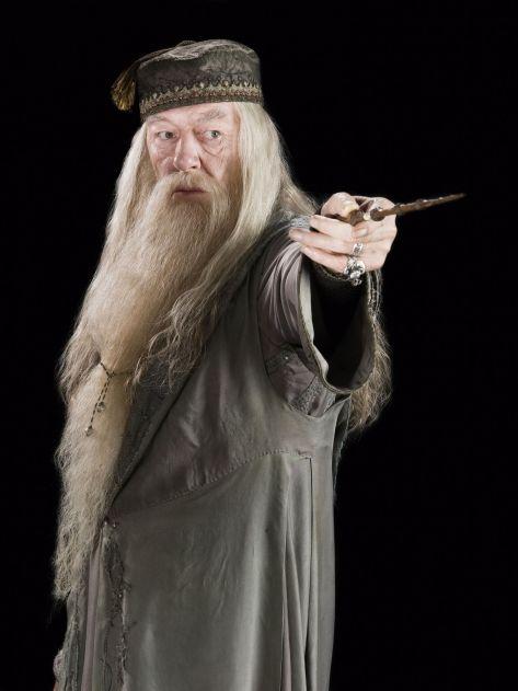 Harry Potter; Hermione; Dumbledore; Harry; Ron; PCM; Process Communication Model; Magda Tabac; PCM trainer; Process Communication Model Trainer