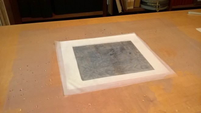 Fig 2 - Object on top of damp blotters in preparation for washing