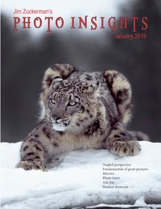 Photo Insights – January 2019