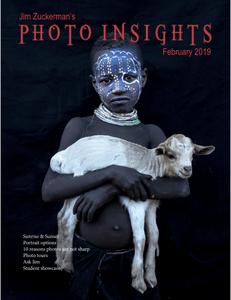 Photo Insights – February 2019
