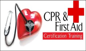 BLS for Healthcare Provider CPR Training --- Co-Lin Simpson
