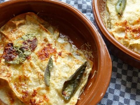 lasagne mit birne und roquefort