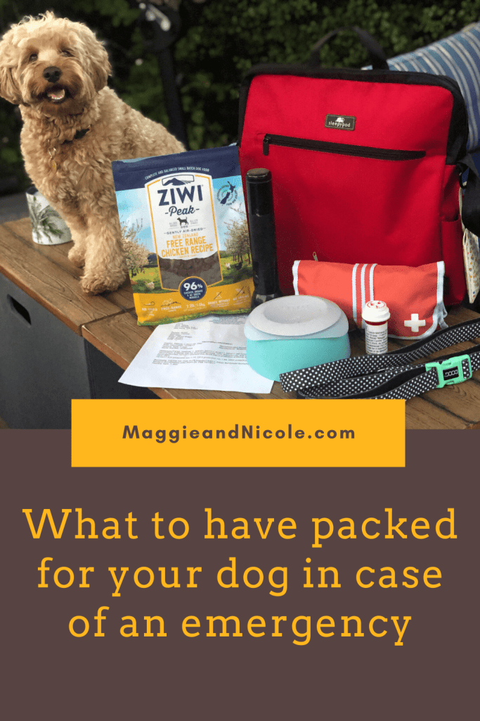 What to pack in your pets emergency bag