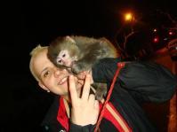 SHANGHAI- The infamous monkey