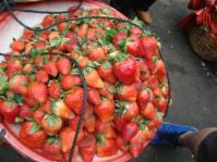XIAMEN- fresh fruit was everywhere!