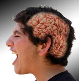 undeveloped brain
