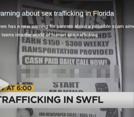 sex trafficking scam
