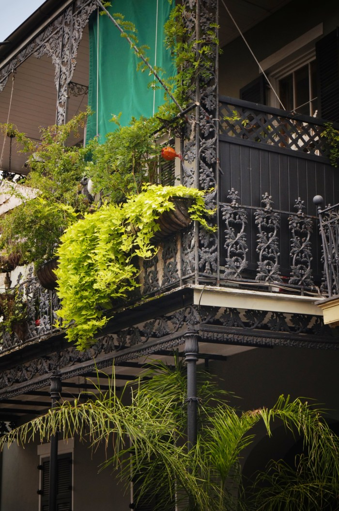 French Quarter Balcony Gardens