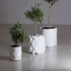 Studio-Ayaskan-Growth-Origami-Planter1