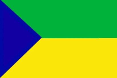 MSA Flag