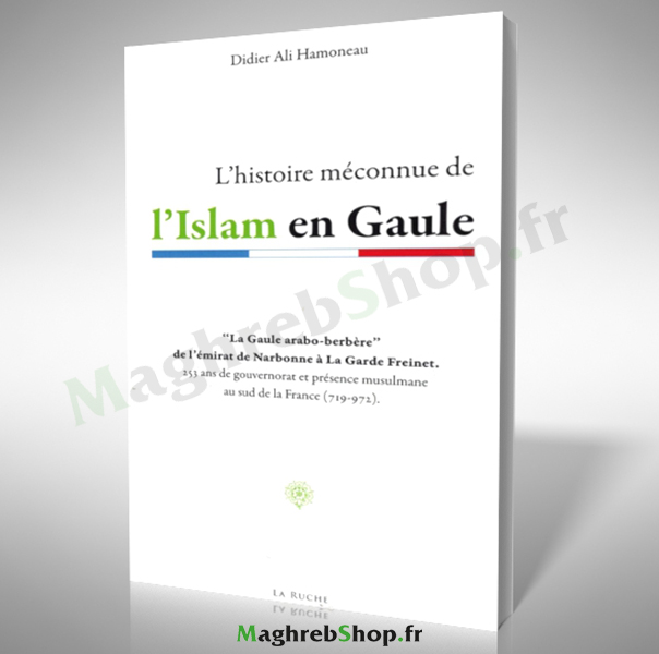 Livre : L'histoire méconnue de L'islam en Gaule