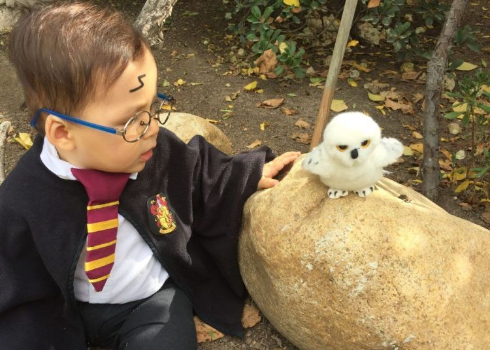 El 95% de potterheads quieren ser padres solo para poder disfrazar a su hijo de mago/bruja