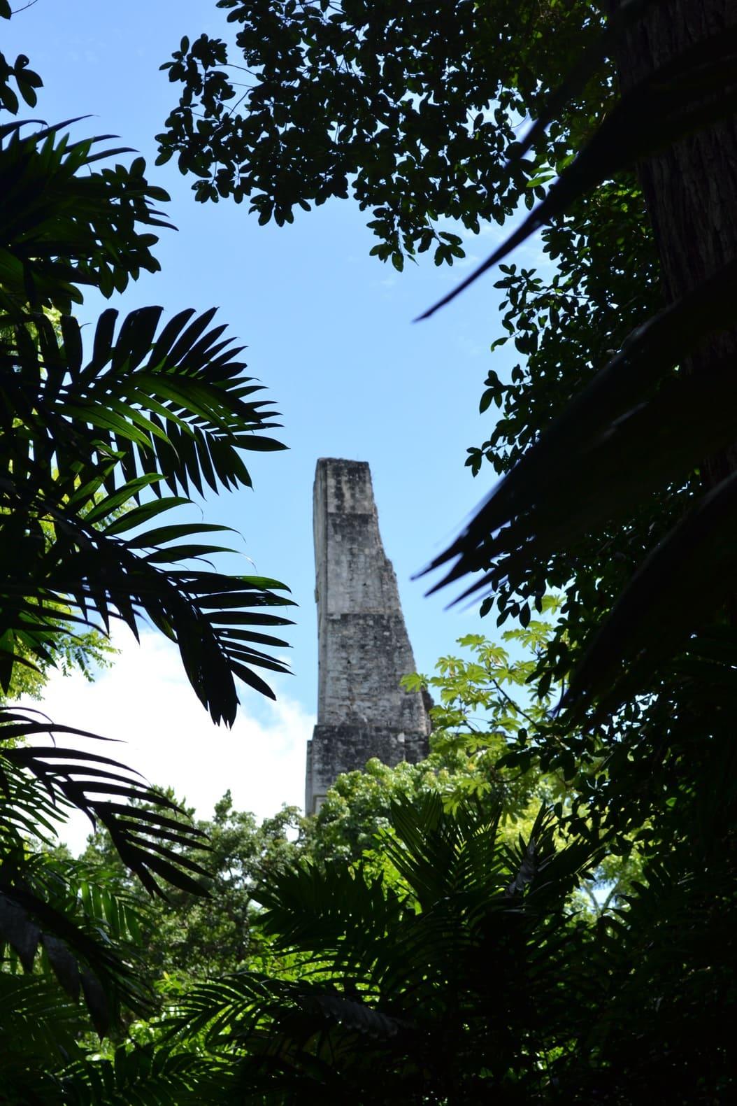 Tikal - guatemala 4