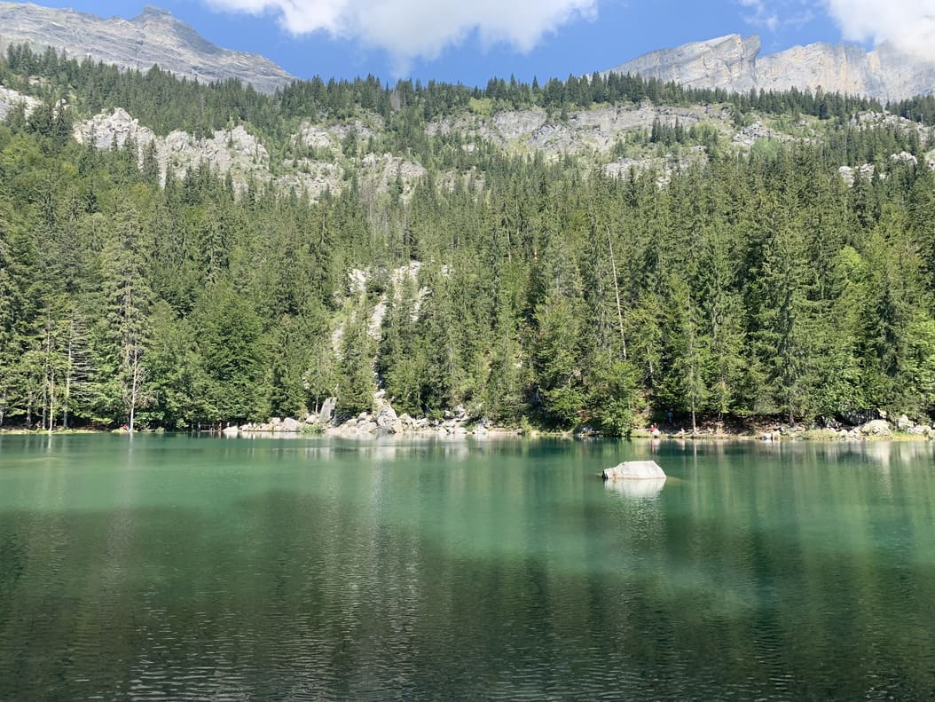 lac vert - passy - haute savoie - france - 1