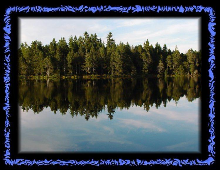 Etang de Gruere - magical lake