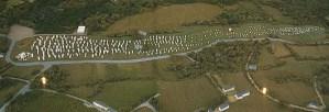 Menhire Carnac Bretagne