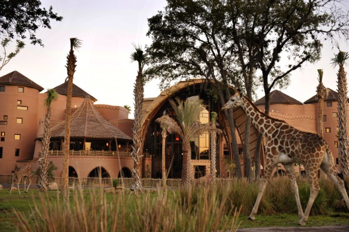 Kidani Village Villas at Disney's Animal Kingdom Lodge Resort
