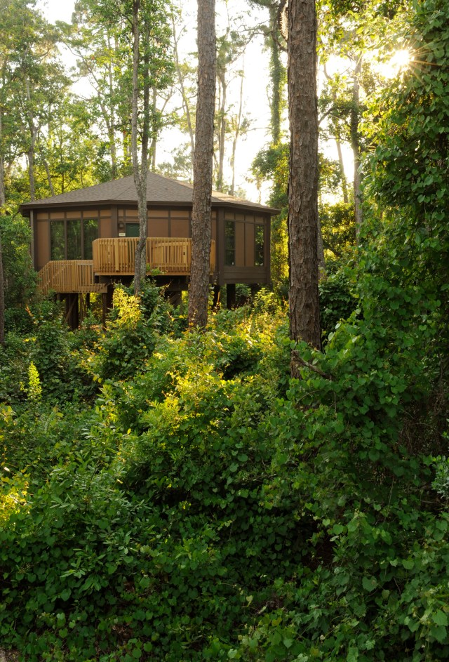 Tree House Villas; Photographer Kent Phillips