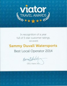 Viator 2014 Award