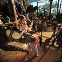 Disney's Animal Kingdom Attractions with Short(er) Wait Times