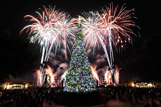 Holiday Illuminations - Photo by Disney Parks