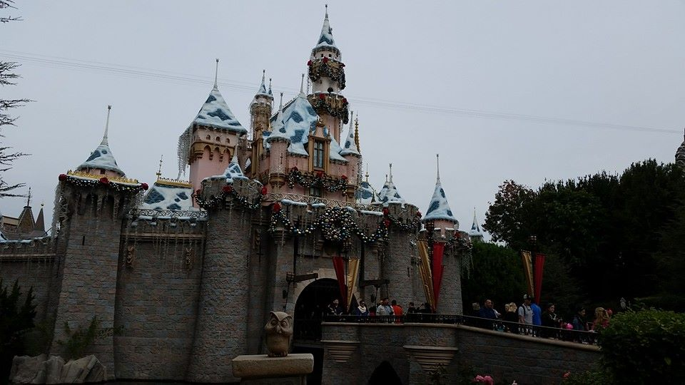 Sleeping Beauty Castle Holiday