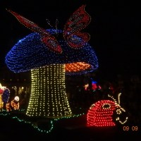 Rumor: Is it Lights Out for the Main Street Electrical Parade?