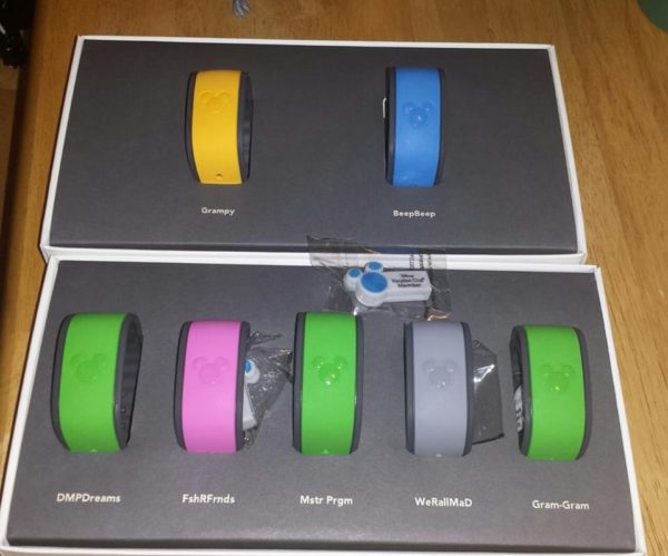 Disney World Magic Bands