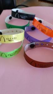 Aulani Swim bands