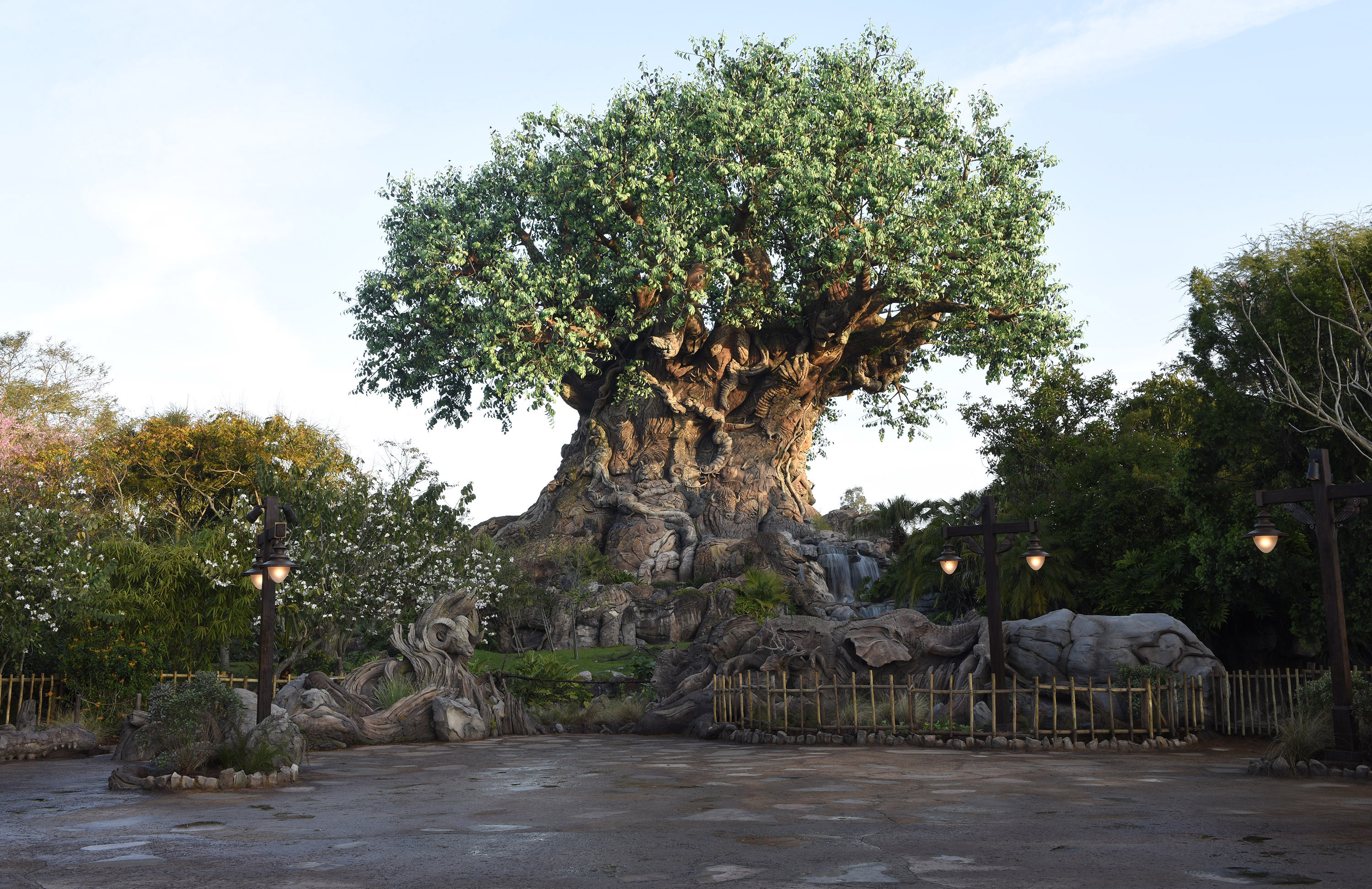 Disney Debuts New Additions To Disney S Animal Kingdom