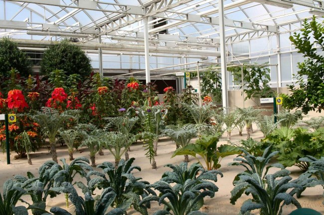 Living With the Land Greenhouse