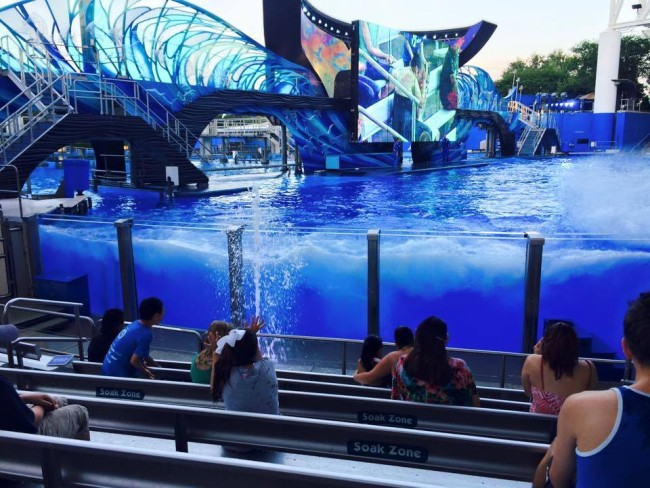 Soak Zone - Photo courtesy of Katie Vannoy