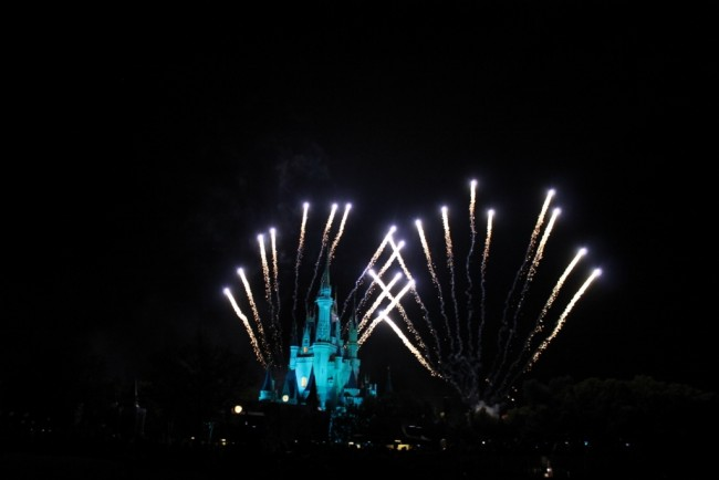 View of Wishes from the Wishes Dessert Party at the Magic Kingdom-Picture by Lacey McBride Spence