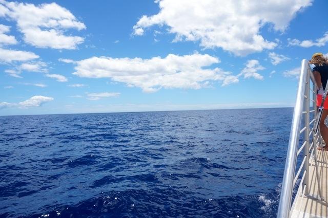 catamaran sail Aulani